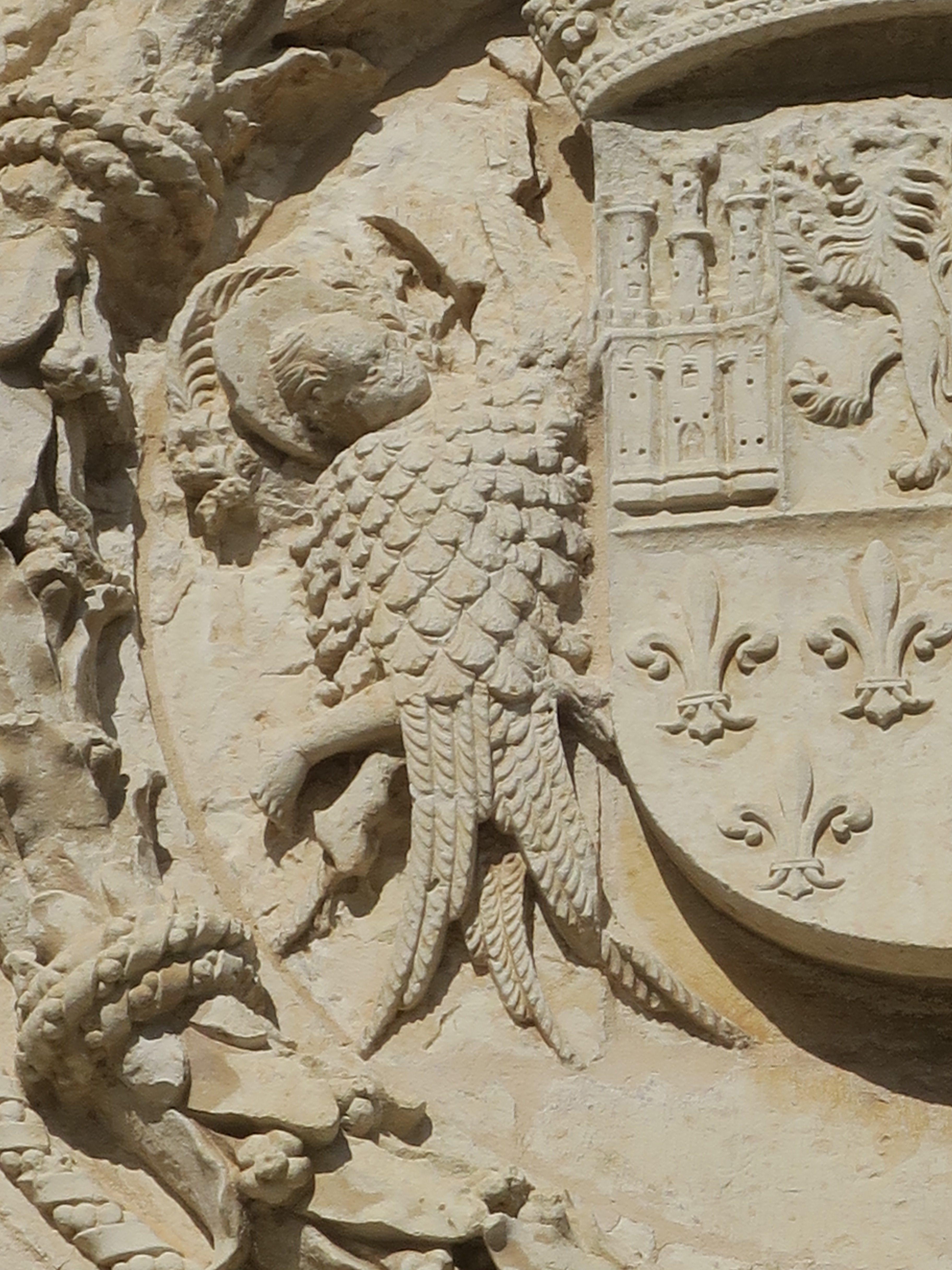 Escudo. Detalles (2) Indio